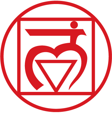 yoga  and the muladhara chakra